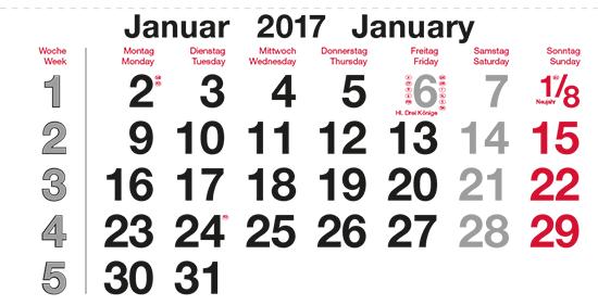 terminic Mehrmonatskalender Super DEUTSCH / 2-sprachig Monat Januar 2015