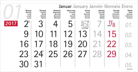 terminic Mehrmonatskalender Super DEUTSCH/5-sprachig (D-GB-F-I-E) Monat Januar 2015