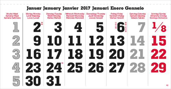 terminic Mehrmonatskalender Super EURO 6-sprachig Monat Januar 2015