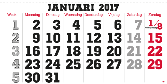 terminic Mehrmonatskalender Super Niederlande Januar 2015