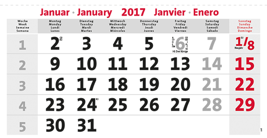 terminic Mehrmonatskalender Super DEUTSCH/4-sprachig Monat Januar 2015