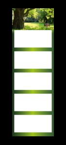 5-Monatskalender super 103 cinco Beispielbild