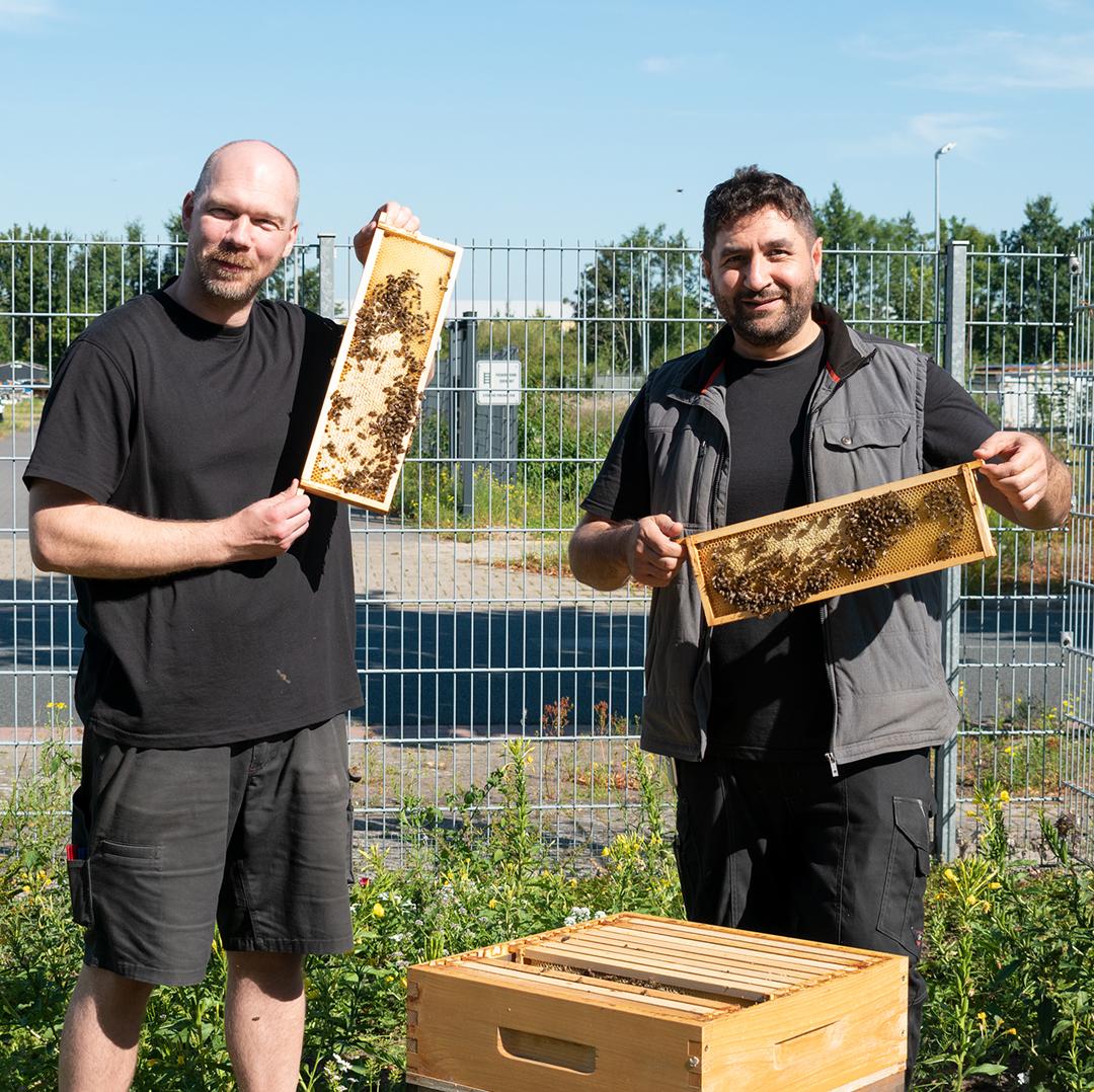 Tobias Wellbrock und Houssam Remmo zeigen die Honigwaben der terminic-Bienen bei strahlend blauem Himmel in die Kamera